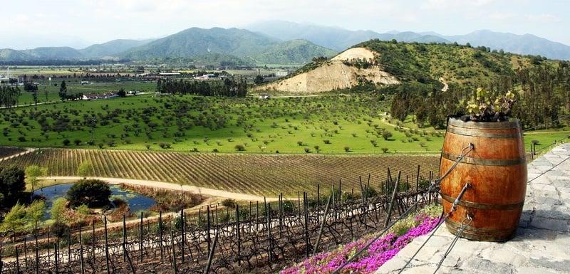 Passeio pelas vinícolas em Santiago
