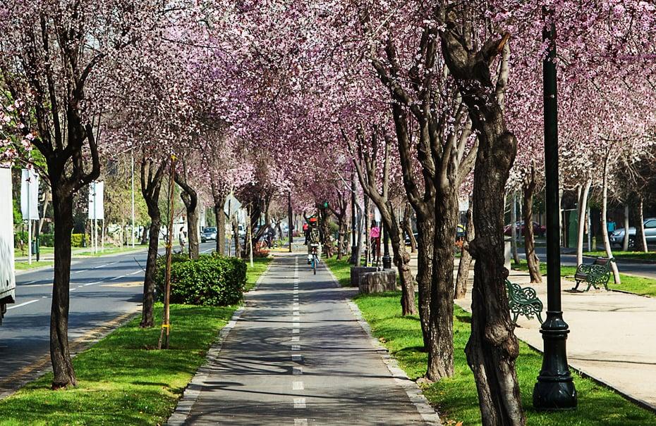 Região para se hospedar em Santiago do Chile: Plaza de La Alcaldesa