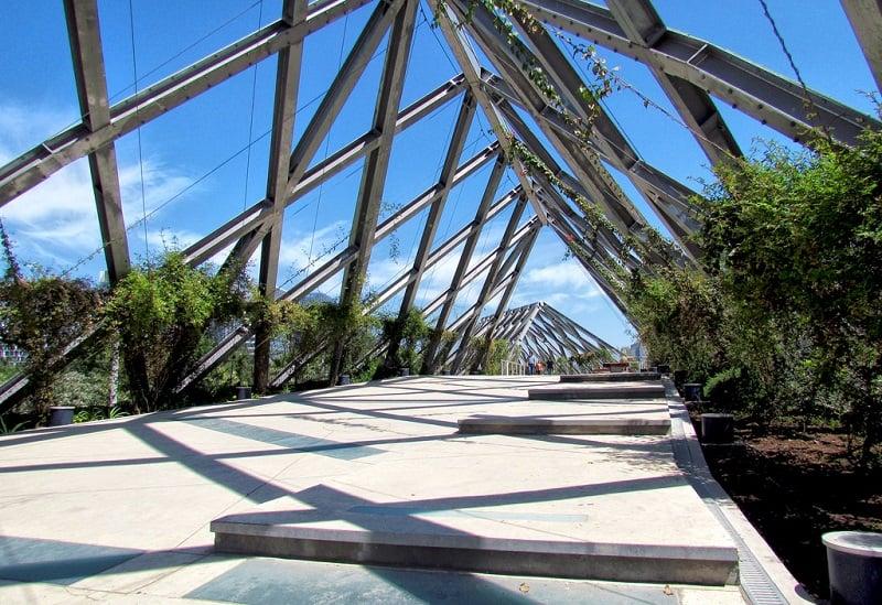 História do Parque Araucano