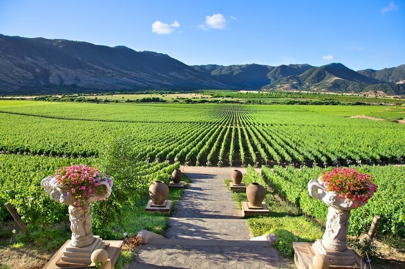 Conhecer as vinícolas em Santiago no mês de setembro