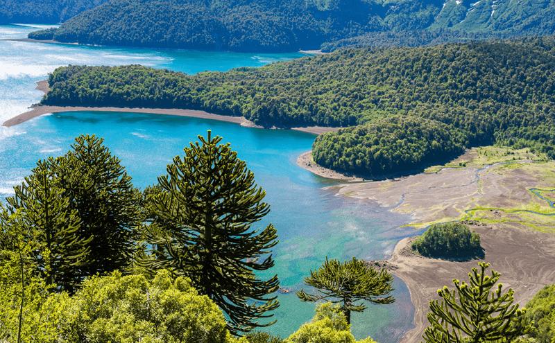 Parque Nacional Conguillio.em Temuco
