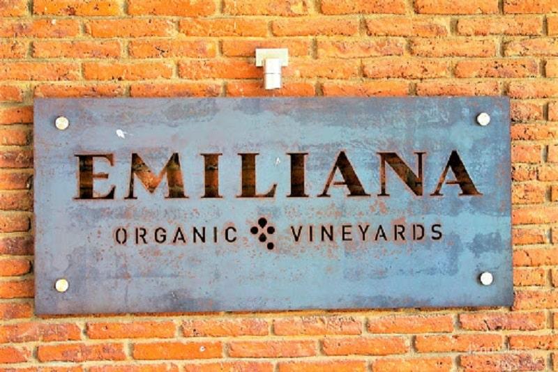 Placa Vinícola Emiliana - Chile