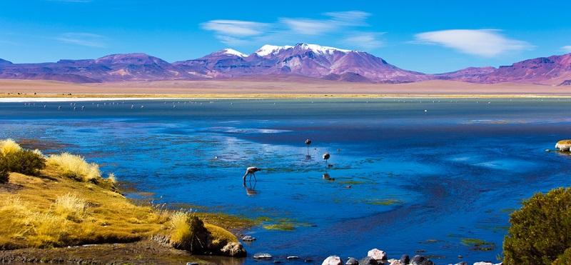 Natureza em San Pedro do Atacama